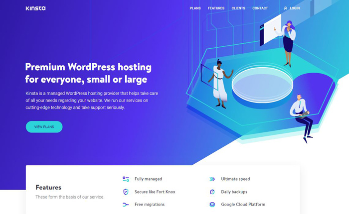 Kinsta Web Hosting Services Reviews